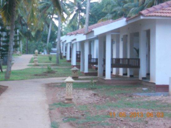 Estuary Island: Vaidyashala for Aurvedic treatment.