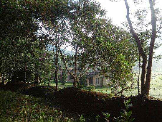 Fazenda Gamela Eco Resort: Vista pela manhã do quarto