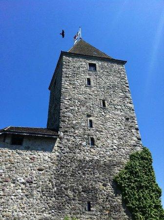 Schloss Rapperswil: Turm