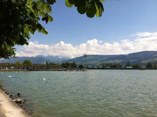 Schloss Rapperswil: Blick zum See