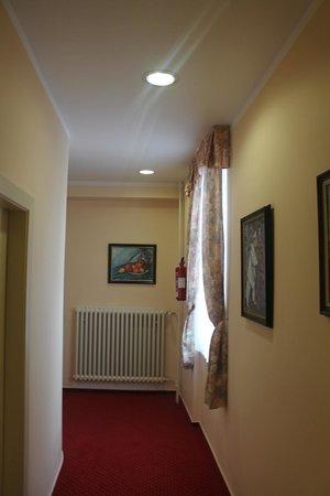 Hotel Melantrich: Отель