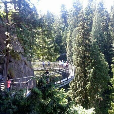 WESTCOAST Sightseeing: the cliff walk