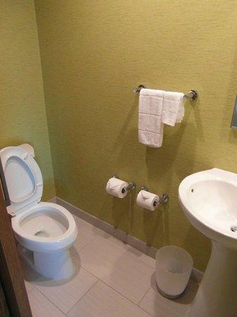 SpringHill Suites Pittsburgh Latrobe: Separate toilet area
