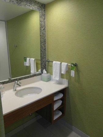SpringHill Suites Pittsburgh Latrobe : Bathroom