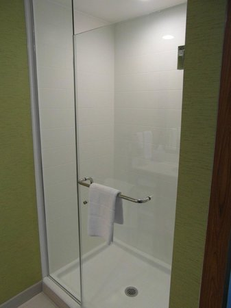 SpringHill Suites Pittsburgh Latrobe : Bathroom shower