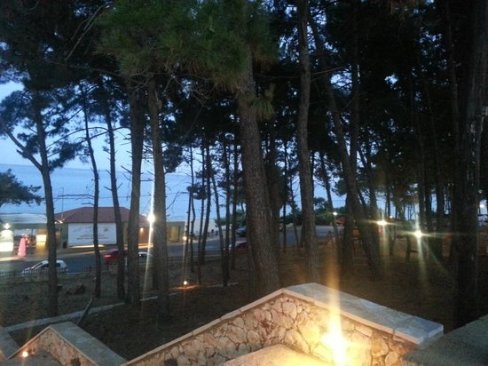 Livadaki Village Hotel: Skala pines to the sea