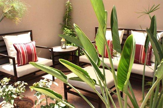 Riad Vanilla sma : Roof terrace