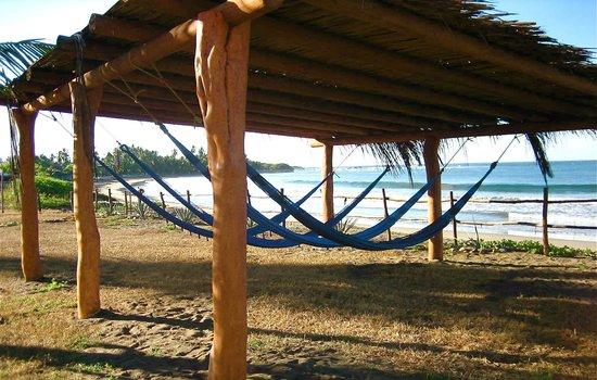 La Saladita, Μεξικό: Communal Hammock area