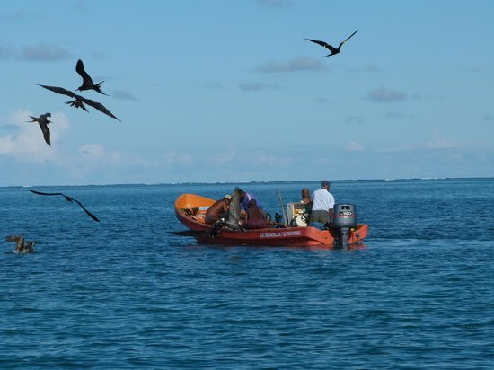 Nico Excursions: Pêche au filet