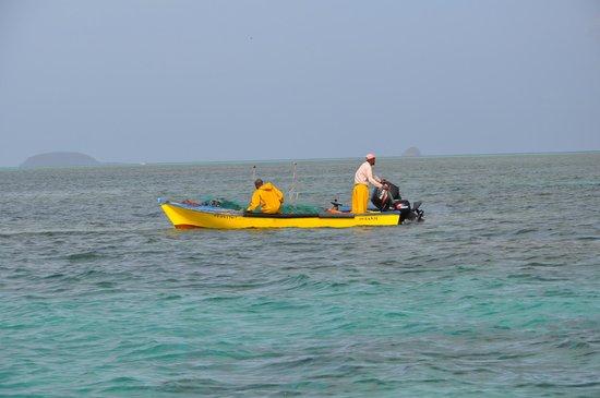 Nico Excursions: Barque de pêcheur