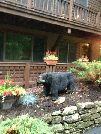 Bear Mountain Lodge