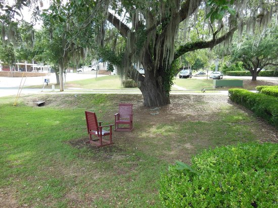 Suburban Extended Stay Hotel: Seating outside by giant oak tree