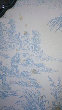 جروسفينور بولفورد هوتل آند سبا: Stains on the wall