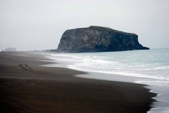 Goat Rock Beaches: the 'goat rock'