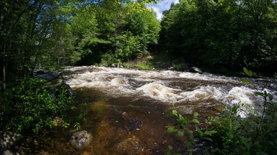 Prospect Mountain Campground: After heavy rainfall, wild rapids