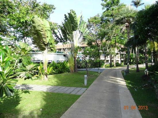 Centara Karon Resort Phuket: garden