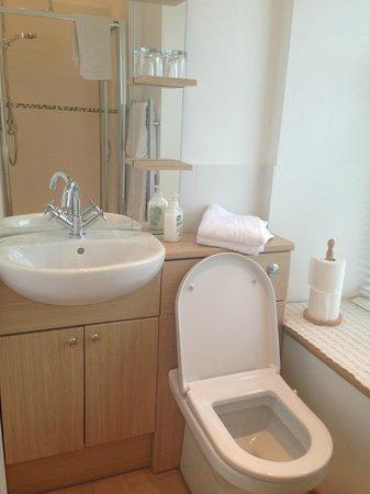 Glanllifon Bed & Breakfast: Room 1's En-Suite
