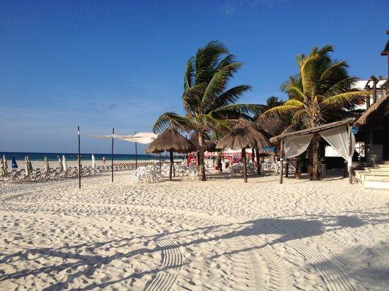 Hotel Mimi del Mar: Beach