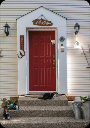 The Inn at the Ninth Hole Bed & Breakfast: Friendly cat posing at one of the doors