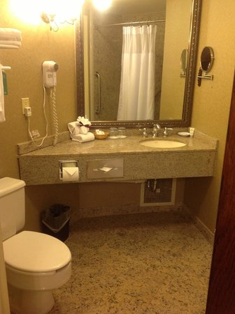 Crowne Plaza Edison: Large Bathroom w/tub and shower