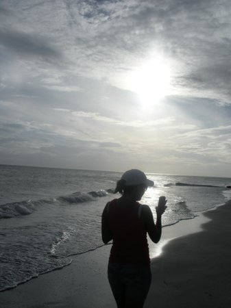 Shoreline Island Resort: The sunset
