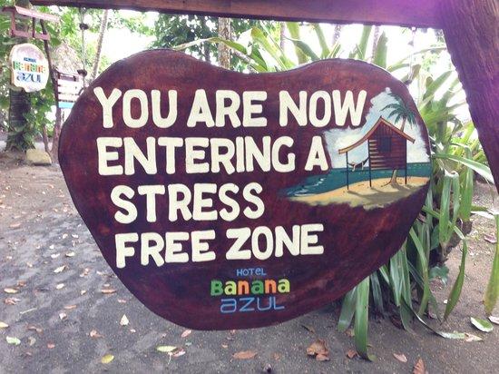 Hotel Banana Azul : So true!
