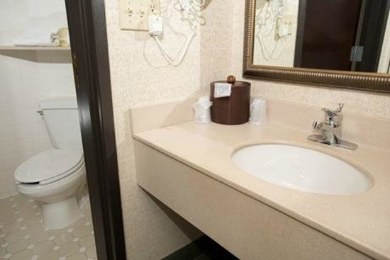 Drury Inn & Suites Kansas City Airport: Bathroom