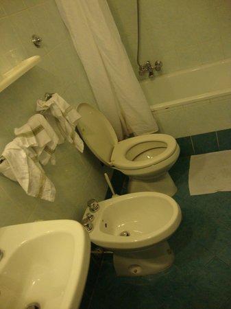 Hotel Maxim: banheiro
