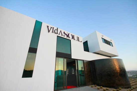 Vidasoul Hotel