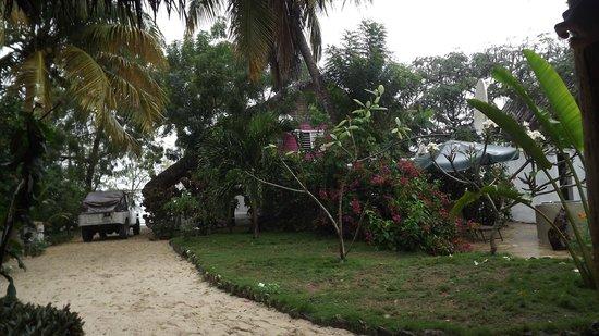 Villa Rosa: Jardin de la Villa Rosa