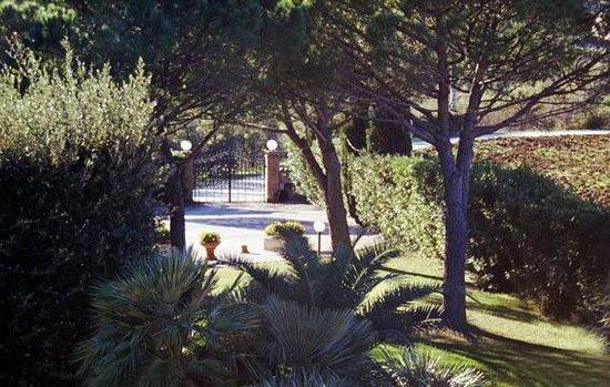 Villa Lavinia B&B: Parco