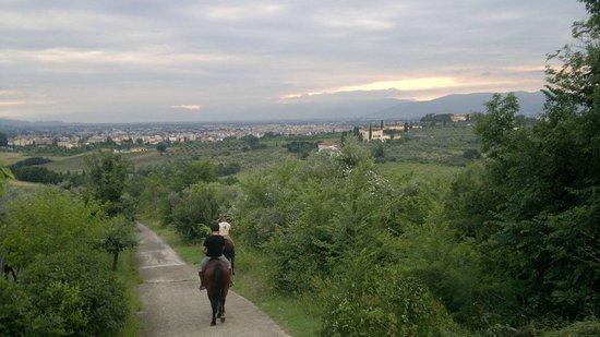Fattoria Settemerli: View while horse riding