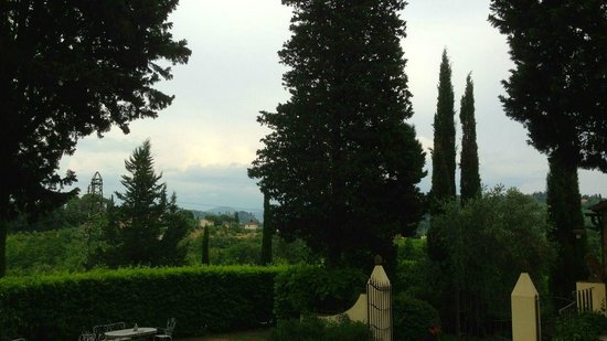 Fattoria Settemerli: View from the grounds