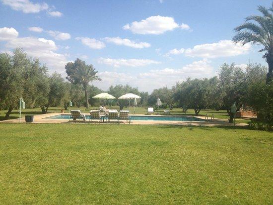 Dar Kantzaro: Udsigt fra hotel ud til pool/have
