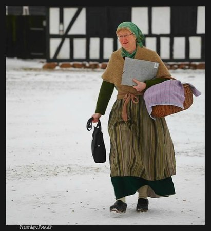 Frilandsmuseet Hjerl Hede: vinterpåklædning