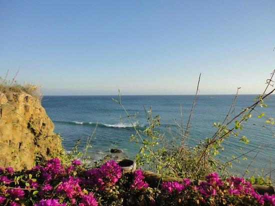 Grand Palladium Vallarta Resort & Spa : Vagues des surfers