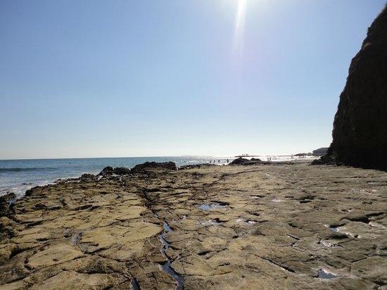 Grand Palladium Vallarta Resort & Spa : Une partie de la plage vers la gauche
