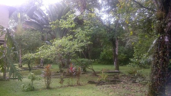 Chaab'il B'e Lodge & Casitas : Tranquility Lodge PG Belize 1
