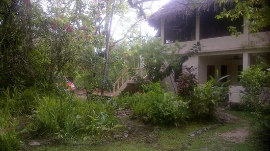 Chaab'il B'e Lodge & Casitas : Tranquility Lodge PG Belize 2