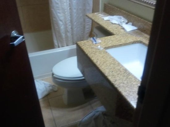 Microtel Inn & Suites by Wyndham BWI Airport Baltimore: bathroom