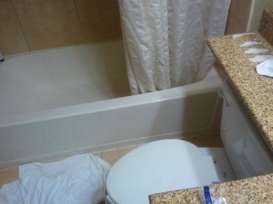 Microtel Inn & Suites by Wyndham BWI Airport Baltimore : bathroom
