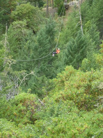 Rogue Valley ZipLine Adventure: Flying