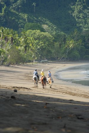 Aguila de Osa Inn: horseback riding on the beach