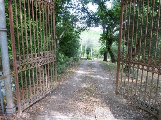 Pieve di Caminino Historic Farm照片