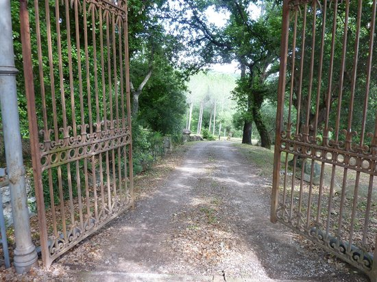Pieve di Caminino Historic Farm: Arriving at Pieve di Caminino
