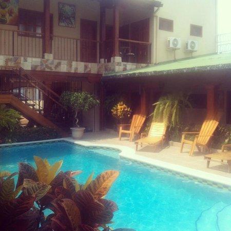 Hotel La Mar Dulce: pool view