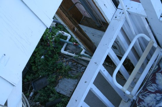 Catalina Boat House : Exposed pipes