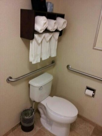 Hampton Inn & Suites Brunswick: towel rack above commode