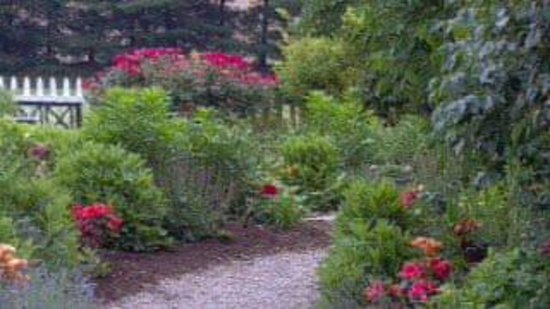 Kirkwood Inn : The garden path starts here
