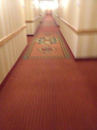 DoubleTree by Hilton Hotel Atlanta - Marietta: i saynyuck, but thats just me